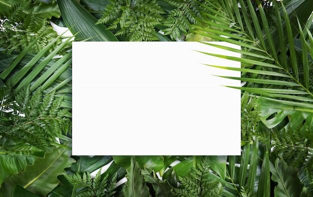 Sfondo estate fluorescente, carta cornice vuota astratta estate Foto Premium