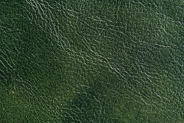 Sfondo in pelle verde Foto Gratuite