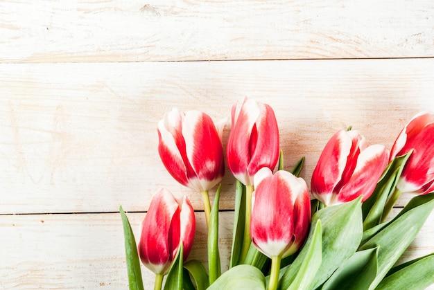 Sfondo per biglietti di auguri congratulazioni fiori di tulipani freschi di primavera su fondo di legno bianco Foto Premium