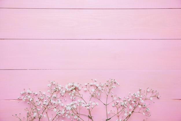Sfondo Rosa Con Fiori Di Campo Scaricare Foto Gratis