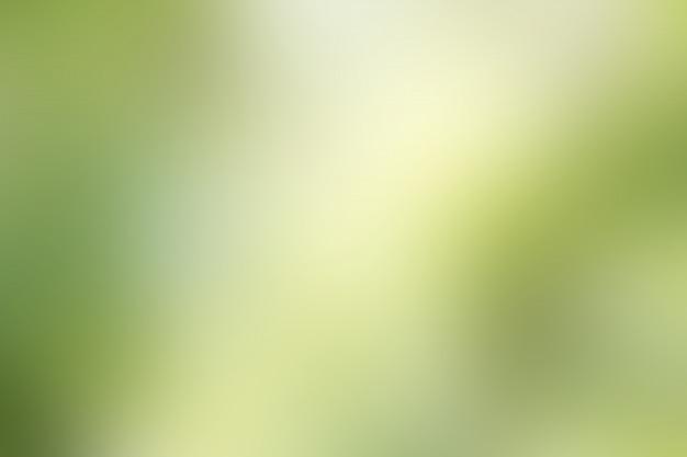 Sfondo sfocato verde Foto Premium