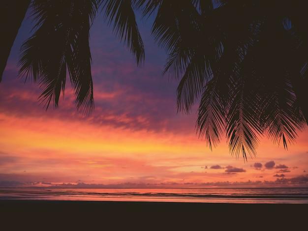 Siluetta della donna e della palma sulla spiaggia di tramonto Foto Premium