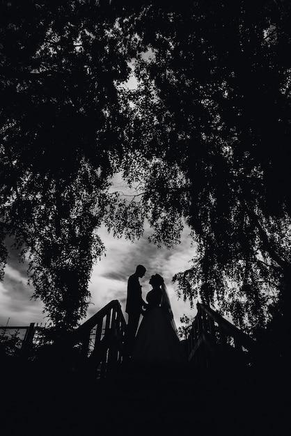Siluetta delle coppie sposi il giorno delle nozze Foto Premium