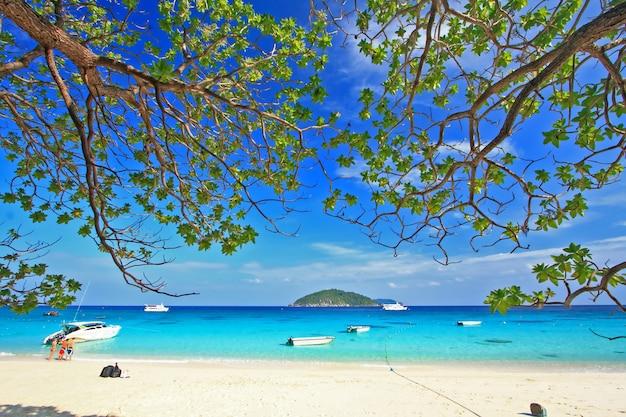 Similan national park, isola paradisiaca situata a sud della thailandia Foto Premium