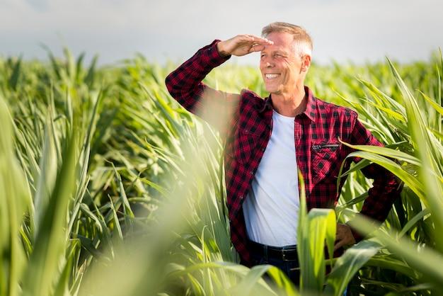 Smile agronomo guardando lontano in un campo di grano Foto Gratuite