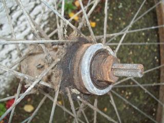 Somme pre bicyclette guerra - w ciclo somme, nueseeland, molle Foto Gratuite