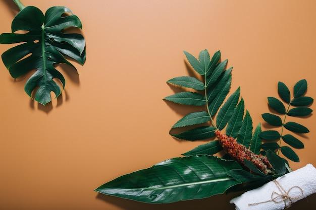 Spa naturale incorniciata da verdi e asciugamano sulla parete marrone Foto Gratuite