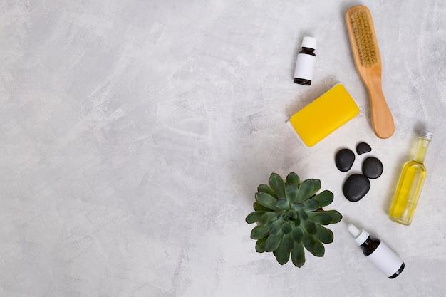 Spazzola di legno; l'ultimo; bottiglie di olio essenziale; sapone giallo e pianta di cactus su sfondo concreto con spazio per scrivere il testo Foto Gratuite
