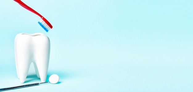 Specchio dentale vicino al modello bianco sano del dente con lo spazzolino da denti su fondo blu-chiaro. Foto Premium