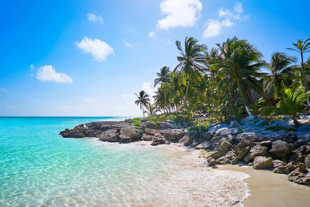 Spiaggia caraibica di tulum in riviera maya Foto Premium