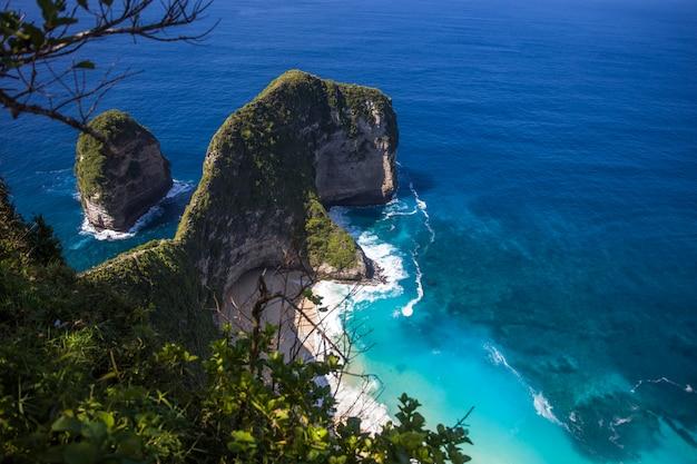 Spiaggia di kelingking sull'isola di nusa penida in indonesia Foto Premium