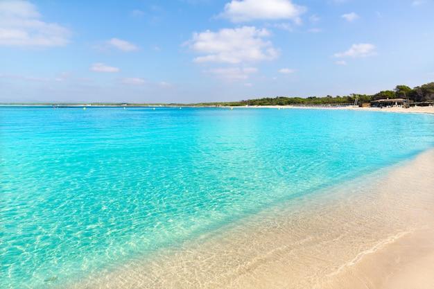 Spiaggia di mallorca marques es trenc estany estanque Foto Premium
