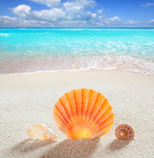 Spiaggia di sabbia tropicale perfetta vacanza estiva Foto Premium
