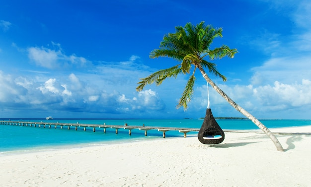 Spiaggia tropicale alle maldive con poche palme e laguna blu Foto Premium