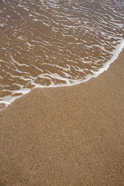 Spiaggia tropicale con sabbia marrone e acqua limpida Foto Premium