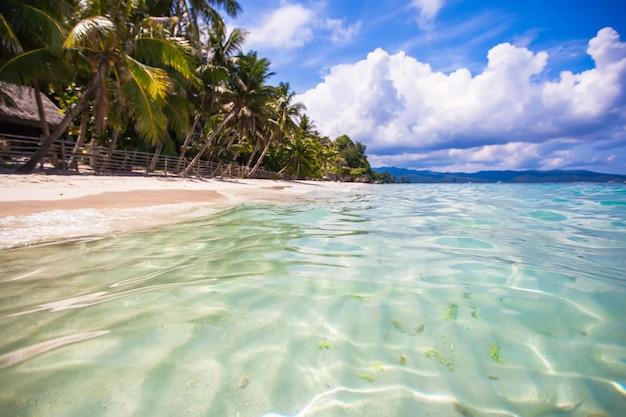Spiaggia tropicale perfetta con palme verdi, sabbia bianca e acqua turchese Foto Premium