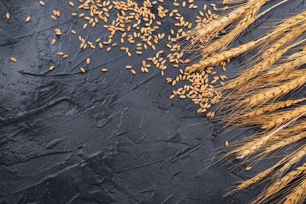 Spighe di grano asciutte su uno sfondo grigio scuro. posto per il testo Foto Premium
