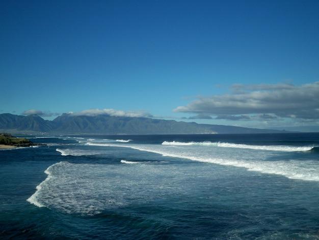 Splendido scenario del mare calmo sotto il cielo limpido alle hawaii Foto Gratuite