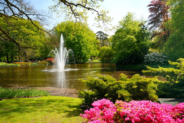 Stagno con la fontana in keukenhof, lisse paesi bassi Foto Premium