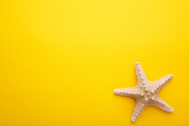 Stelle marine caraibiche su giallo. vista dall'alto Foto Premium