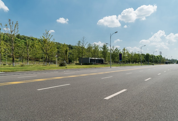 Strada asfaltata ed albero verde in campagna Foto Premium