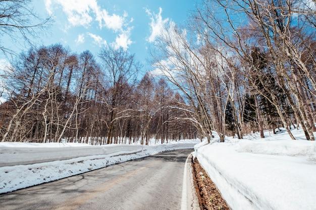 Strada nel tempo della neve Foto Gratuite