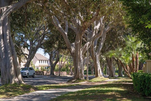 Strade e case in quartieri ricchi grandi città in america Foto Premium