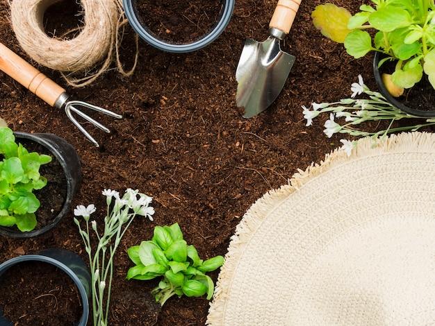 Strumenti e piante da giardinaggio vista dall'alto Foto Gratuite