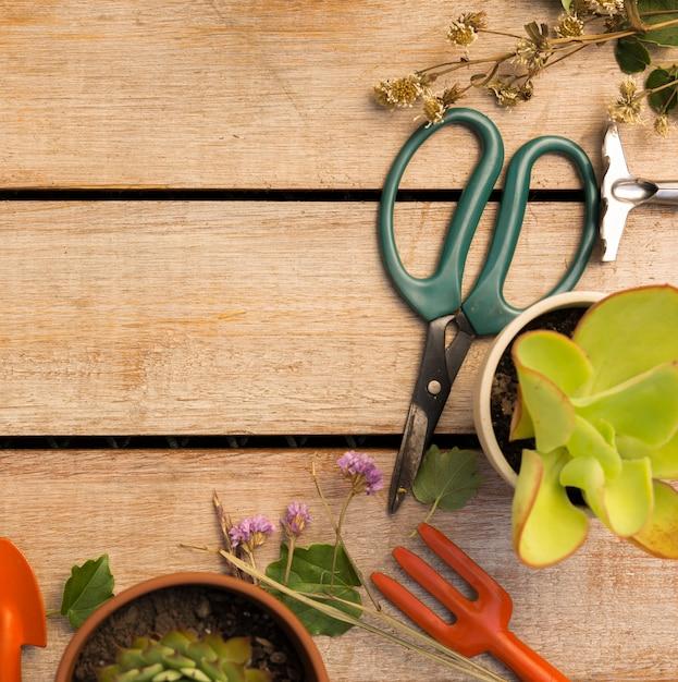 Strumenti e piante sulla tavola di legno Foto Gratuite