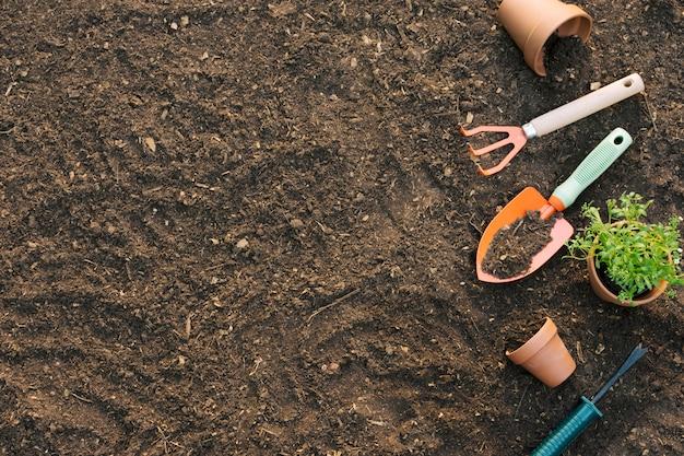 Strumenti e vasi con piante sul terreno Foto Gratuite