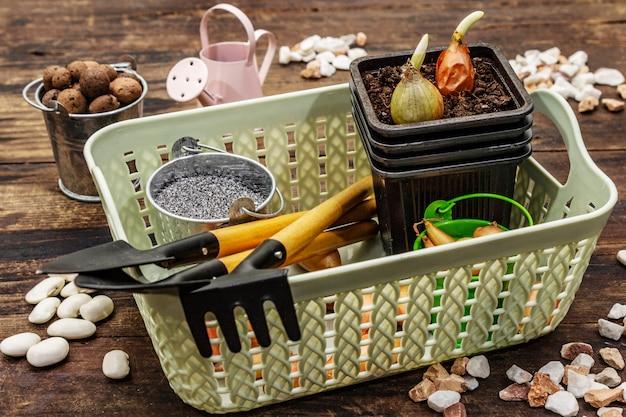 Strumenti per piantare e giardinaggio Foto Premium