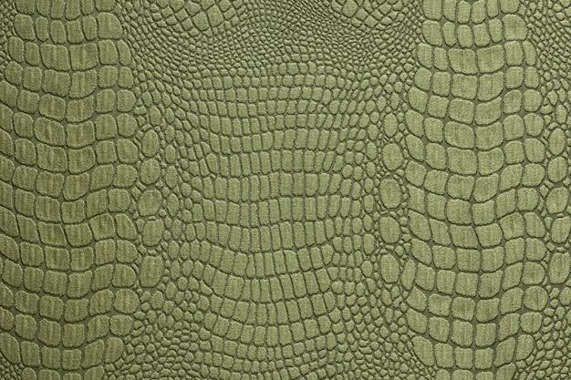 Struttura della pelle di coccodrillo verde oliva come una carta da parati Foto Premium