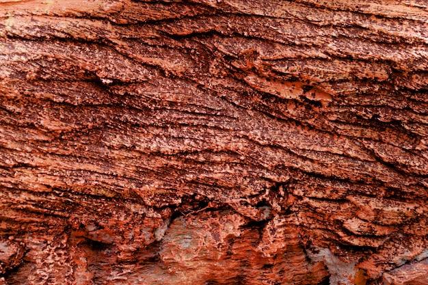 Superficie rossa dello strato della roccia per il fondo di struttura Foto Premium