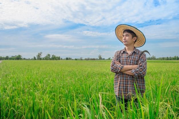 Supporto maschio degli agricoltori asiatici che guarda cielo con i fronti sorridenti alle risaie e ai cieli blu verdi. Foto Premium