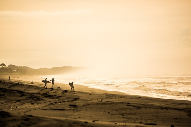 Surfisti all'alba a playa jaco, costa rica Foto Premium