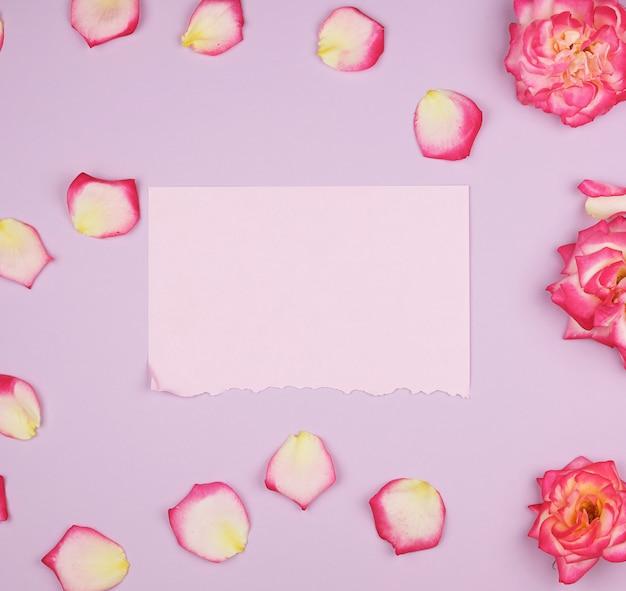 Svuoti lo strato di carta rosa e i germogli delle rose rosa, superficie festiva Foto Premium