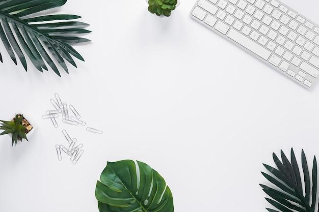 Tastiera; pianta di cactus; foglie e graffette sulla scrivania bianca con copia spazio per la scrittura di testo Foto Gratuite