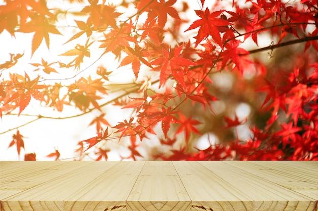 Tavolo da picnic con giardino di acero giapponese in autunno. Foto Premium