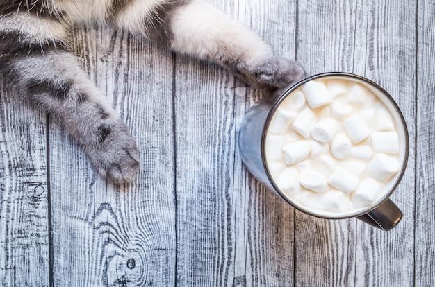 Tazza di cacao con caramelle gommosa e molle e zampe grigie di un gatto su uno sfondo grigio in legno Foto Premium