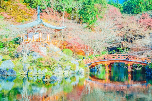 Tempio di daigoji Foto Gratuite