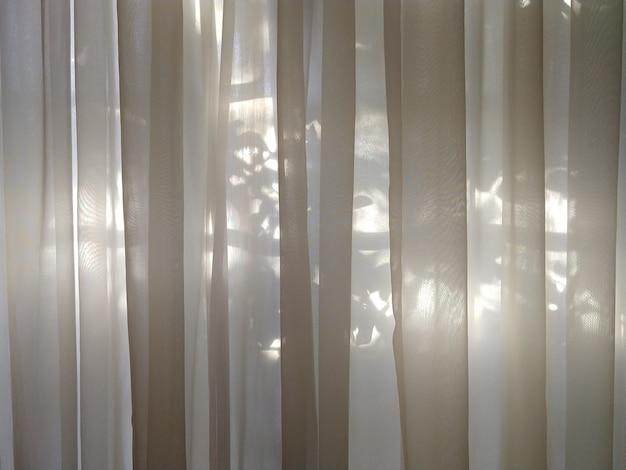Tenda trasparente con luce solare sullo sfondo Foto Premium
