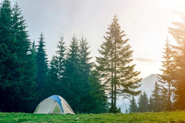 Tenda turistica sulla valle erbosa tra alberi di abete rosso verde alto sulla montagna blu nebbioso distante Foto Premium