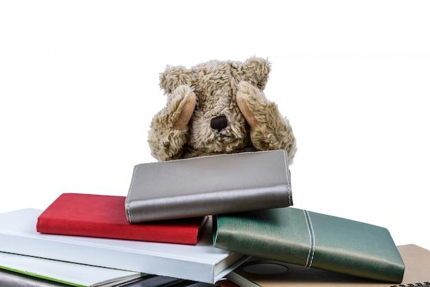 Tenero orsacchiotto con libri Foto Premium