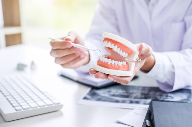 Tenuta del dentista del modello della mascella dei denti e pulizia dentaria Foto Premium