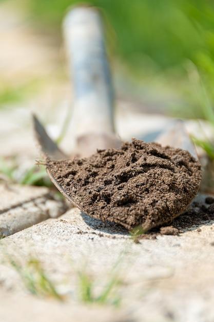 Terra su una piccola pala. lavorare in giardino. Foto Gratuite