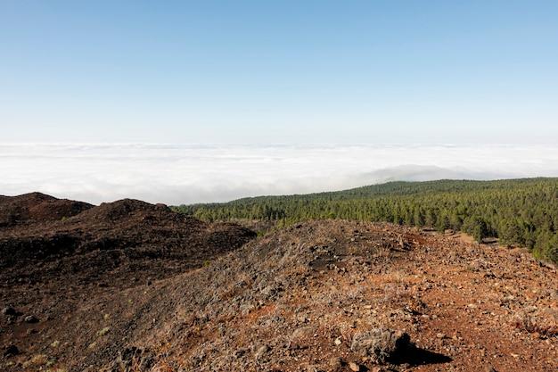 Terreno vulcanico rosso con legno sullo sfondo Foto Gratuite