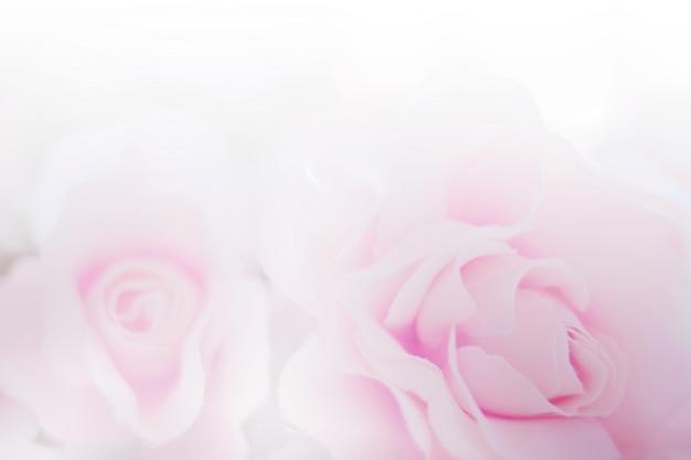 Tessuto di fiori di rosa di texture di carta per lo sfondo Foto Premium