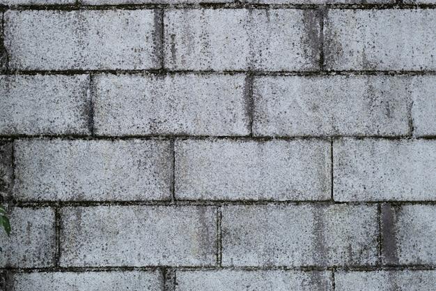 Texture blocchi due Foto Premium
