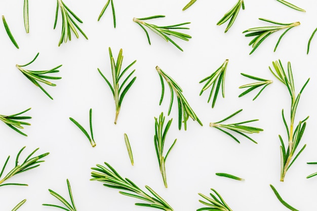 Texture di foglie di rosmarino verde, appena tagliate (rosmarinus officinalis). ingrediente isolato di cucina mediterranea e rimedio casalingo curativo. Foto Premium