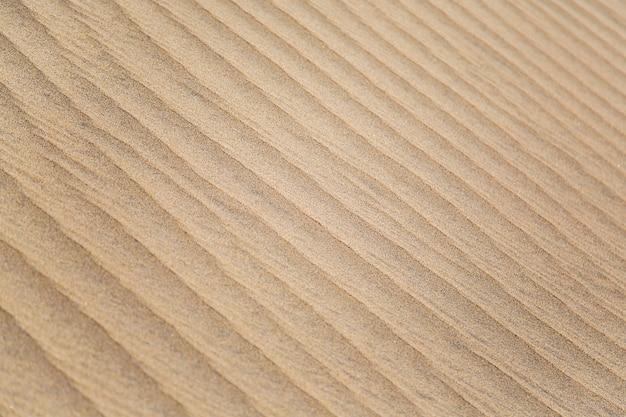 Trama di sabbia Foto Premium